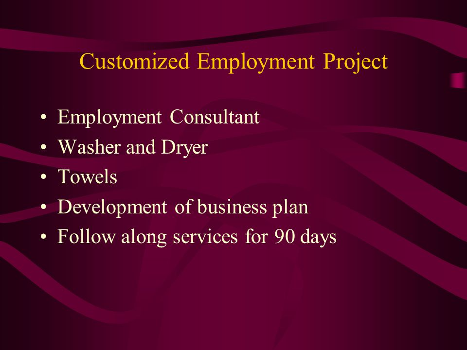 Customized Employment Project Employment Consultant Washer and Dryer Towels Development of business plan Follow along services for 90 days