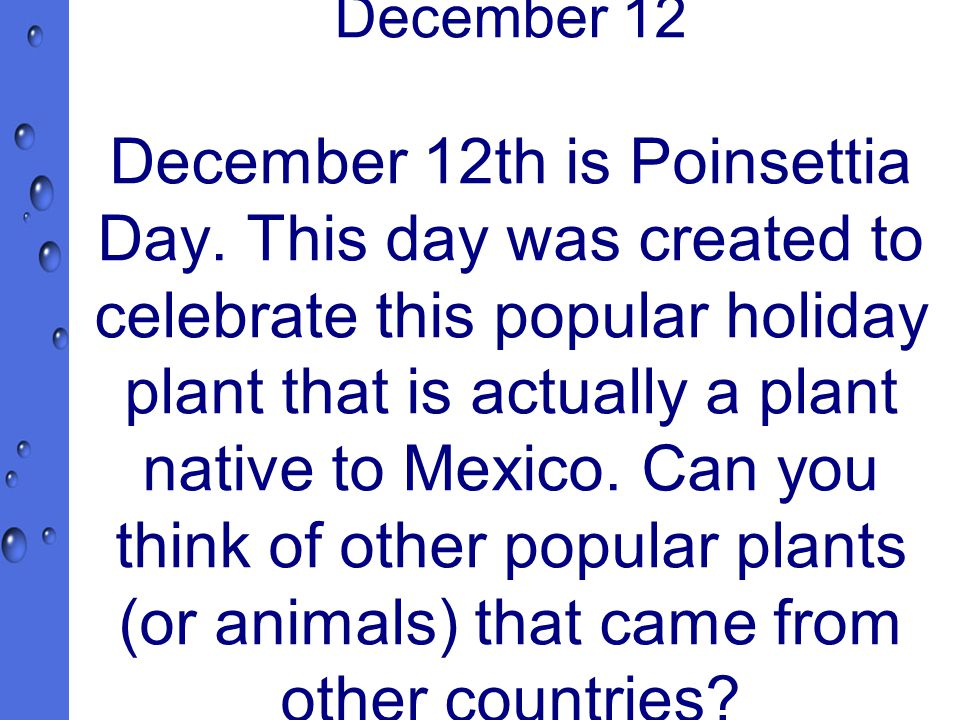 December 12 December 12th is Poinsettia Day.