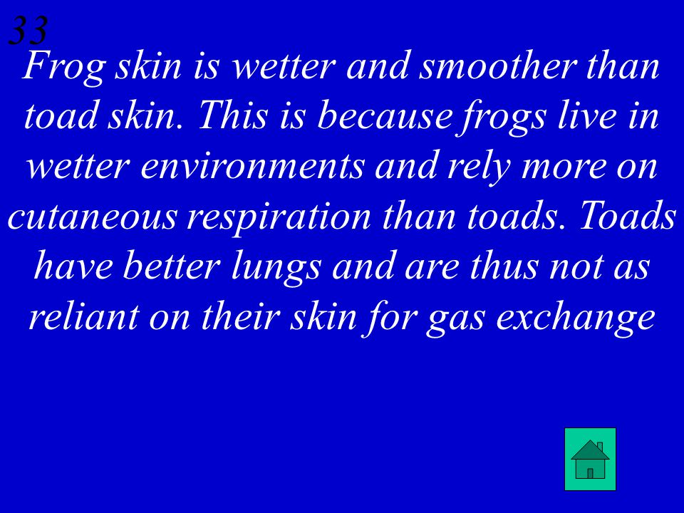 32 Describe the difference between the skin of frogs versus toads and how the skin relates to the lungs.