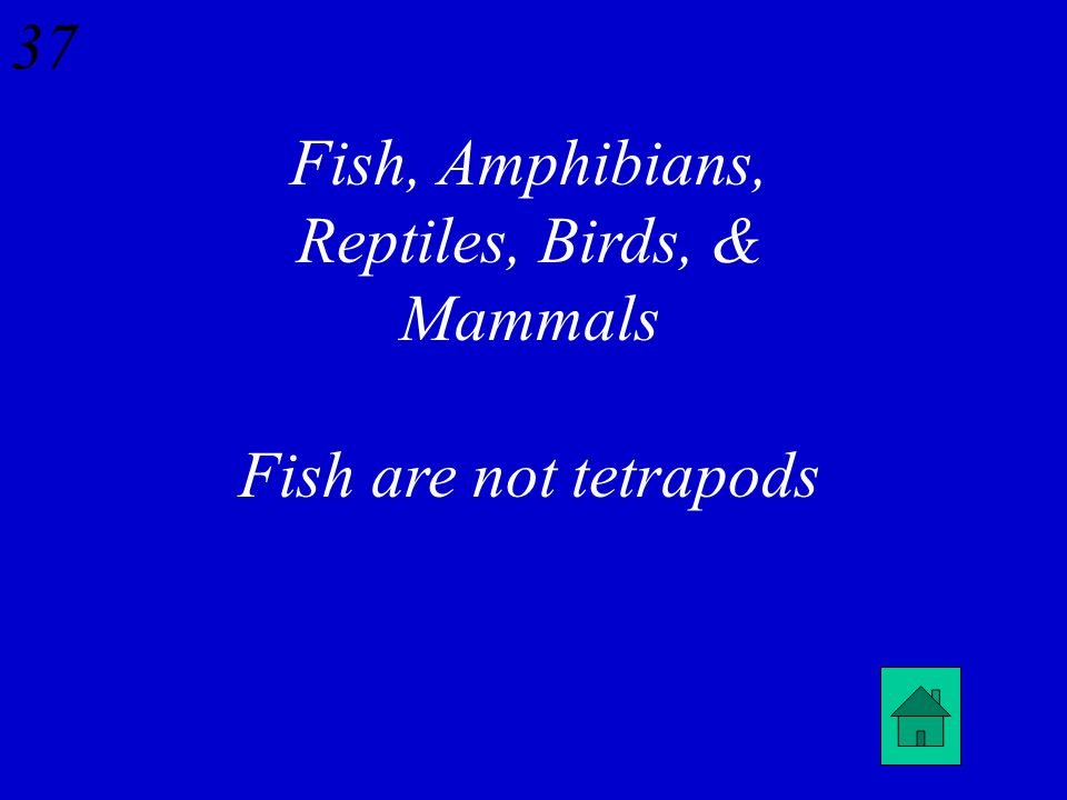 42 Name the 5 types of Vertebrates. Which one is not a Tetrapod
