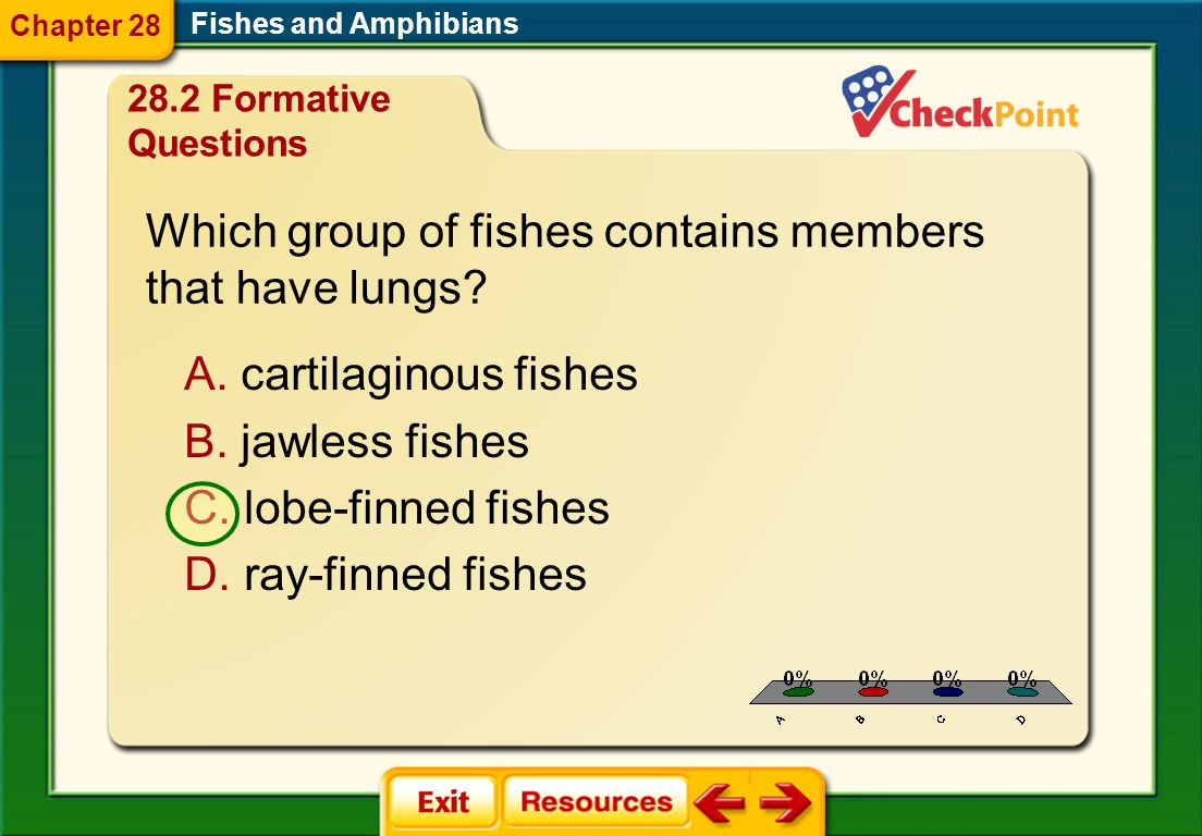 1.A 2.B 3.C 4.D FQ 7 Fishes and Amphibians Chapter 28 28.2 Formative Questions Which group of fishes contains members that have lungs.