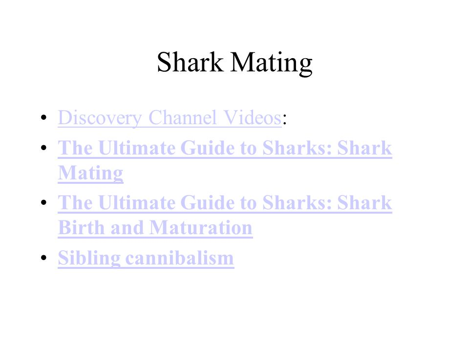 Shark Mating Discovery Channel Videos:Discovery Channel Videos The Ultimate Guide to Sharks: Shark MatingThe Ultimate Guide to Sharks: Shark Mating The Ultimate Guide to Sharks: Shark Birth and MaturationThe Ultimate Guide to Sharks: Shark Birth and Maturation Sibling cannibalism