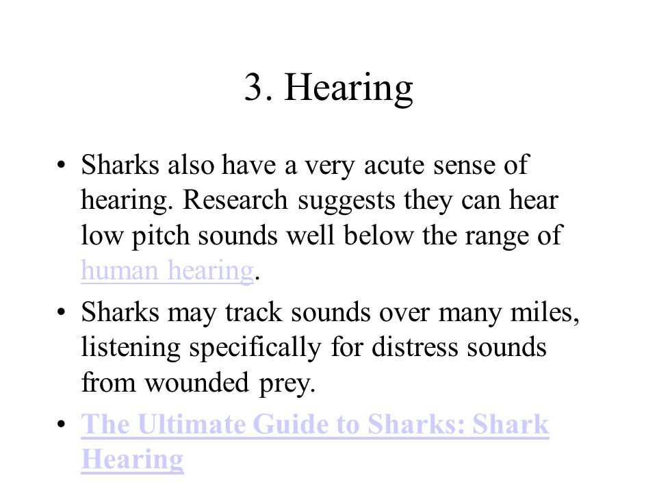 3. Hearing Sharks also have a very acute sense of hearing.