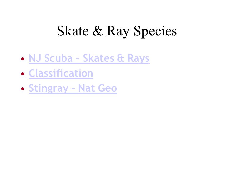 Skate & Ray Species NJ Scuba – Skates & Rays Classification Stingray – Nat Geo