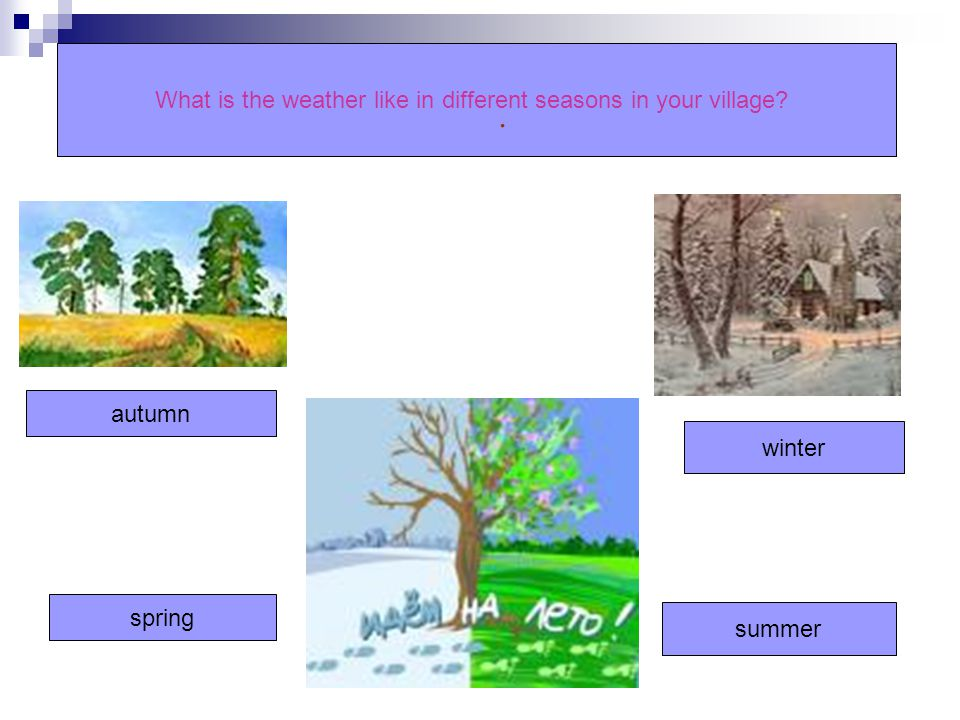 What is the weather like in different seasons in your village? autumn spring winter summer