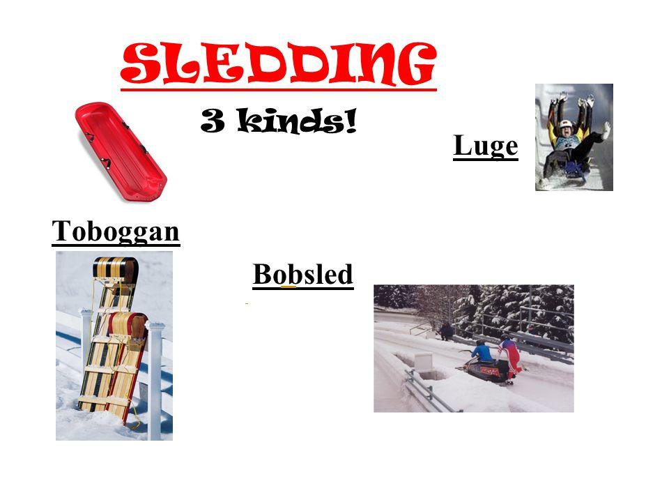 SLEDDING Luge Toboggan Bobsled 3 kinds!