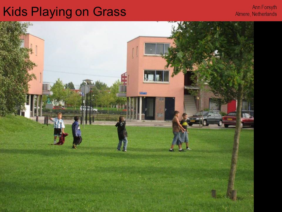 www.annforsyth.net Kids Playing on Grass Ann Forsyth Almere, Netherlands