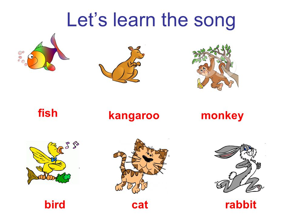 Let's learn the song fish kangaroomonkey birdcatrabbit