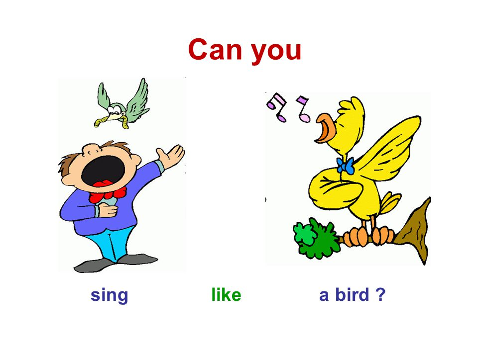 sing like a bird ? Can you