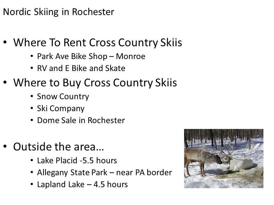 Where To Rent Cross Country Skiis Park Ave Bike Shop – Monroe RV and E Bike and Skate Where to Buy Cross Country Skiis Snow Country Ski Company Dome Sale in Rochester Outside the area… Lake Placid -5.5 hours Allegany State Park – near PA border Lapland Lake – 4.5 hours Nordic Skiing in Rochester