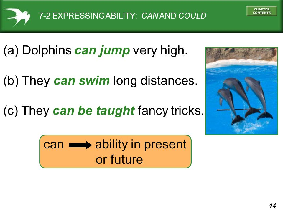 14 can ability in present or future 7-2 EXPRESSING ABILITY: CAN AND COULD (a) Dolphins can jump very high. (b) They can swim long distances. (c) They