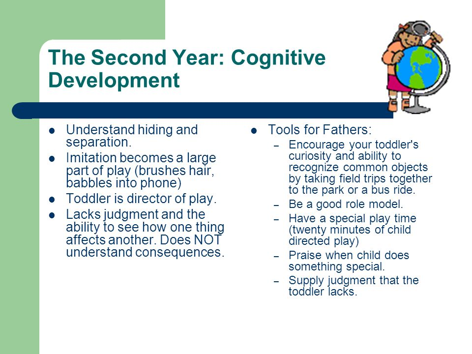 The Second Year: Cognitive Development Understand hiding and separation.