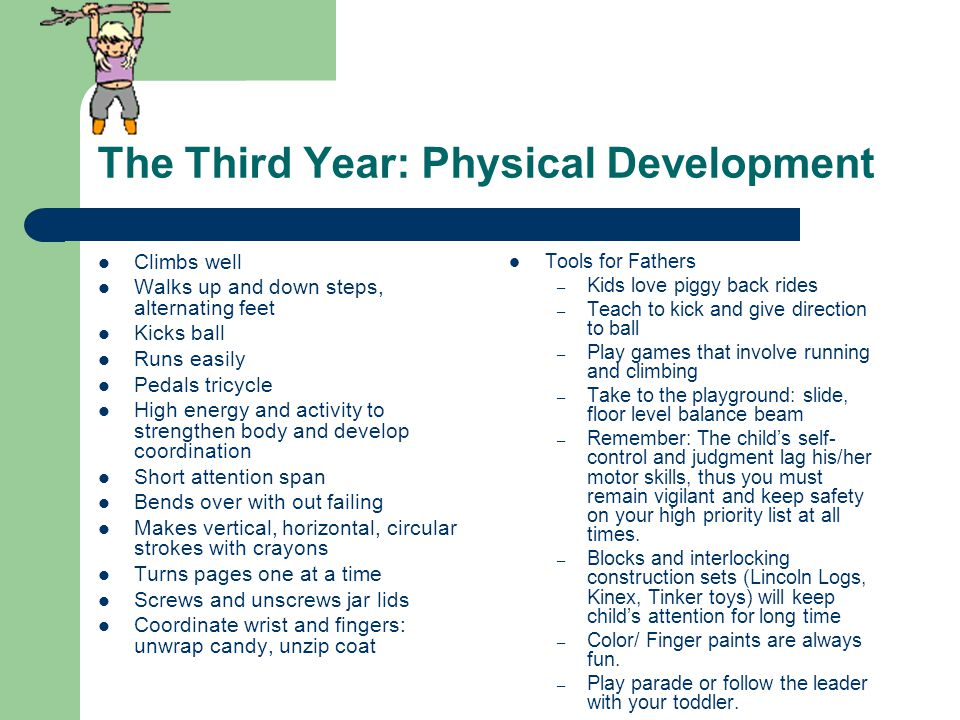 The Third Year: Physical Development Climbs well Walks up and down steps, alternating feet Kicks ball Runs easily Pedals tricycle High energy and activity to strengthen body and develop coordination Short attention span Bends over with out failing Makes vertical, horizontal, circular strokes with crayons Turns pages one at a time Screws and unscrews jar lids Coordinate wrist and fingers: unwrap candy, unzip coat Tools for Fathers – Kids love piggy back rides – Teach to kick and give direction to ball – Play games that involve running and climbing – Take to the playground: slide, floor level balance beam – Remember: The child's self- control and judgment lag his/her motor skills, thus you must remain vigilant and keep safety on your high priority list at all times.