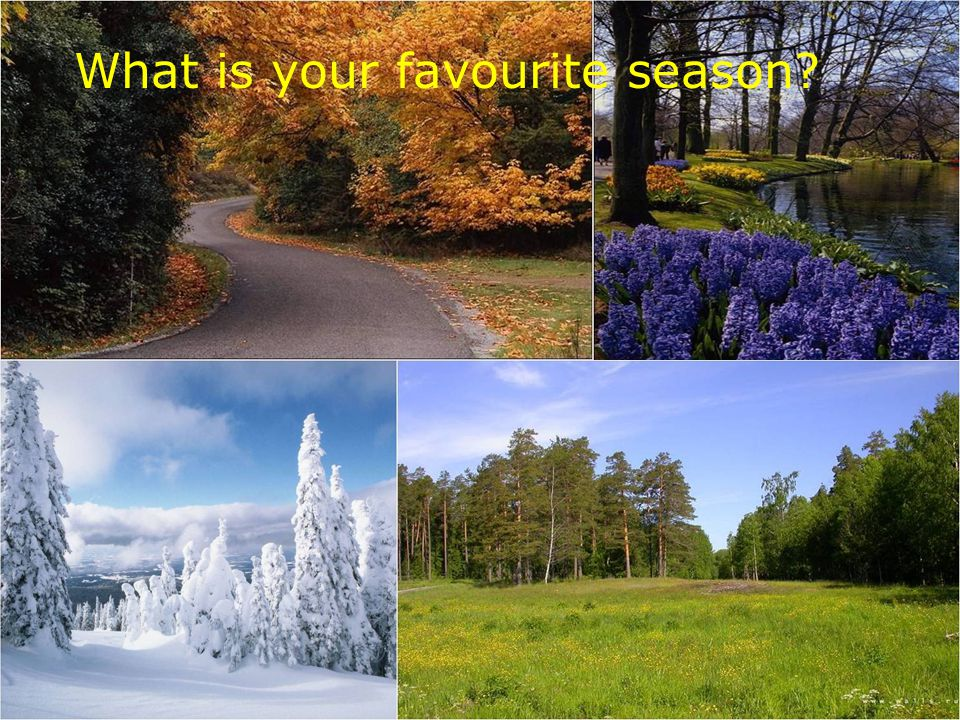 What is your favourite season