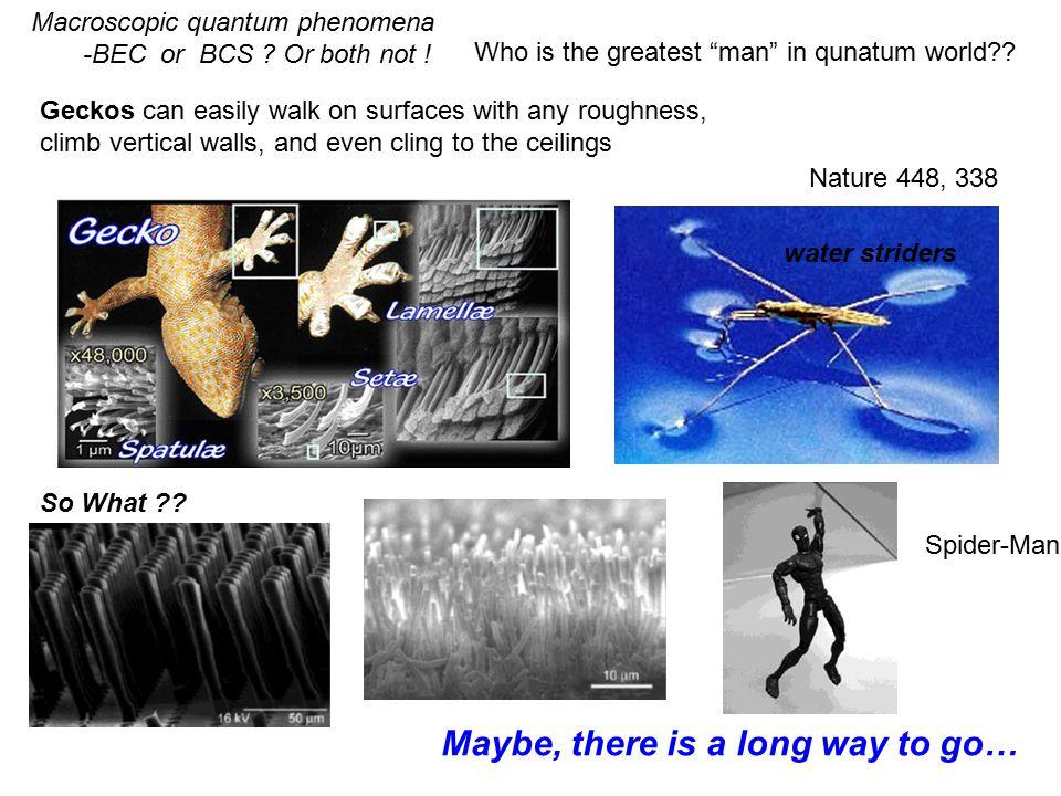 Macroscopic quantum phenomena -BEC or BCS . Or both not .