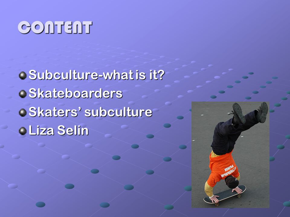 SUBCULTURE – WHAT IS IT .