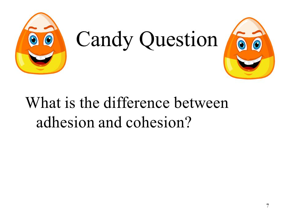 7 Candy Question What is the difference between adhesion and cohesion?
