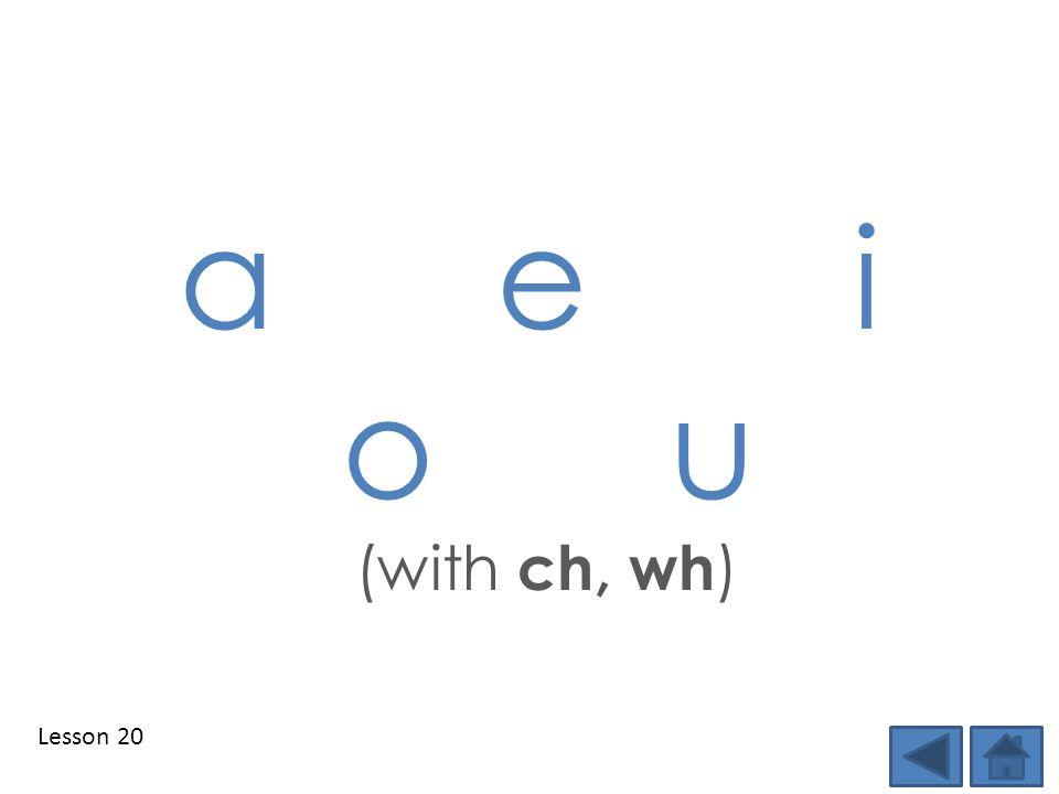 Lesson 20 a e i o u (with ch, wh )