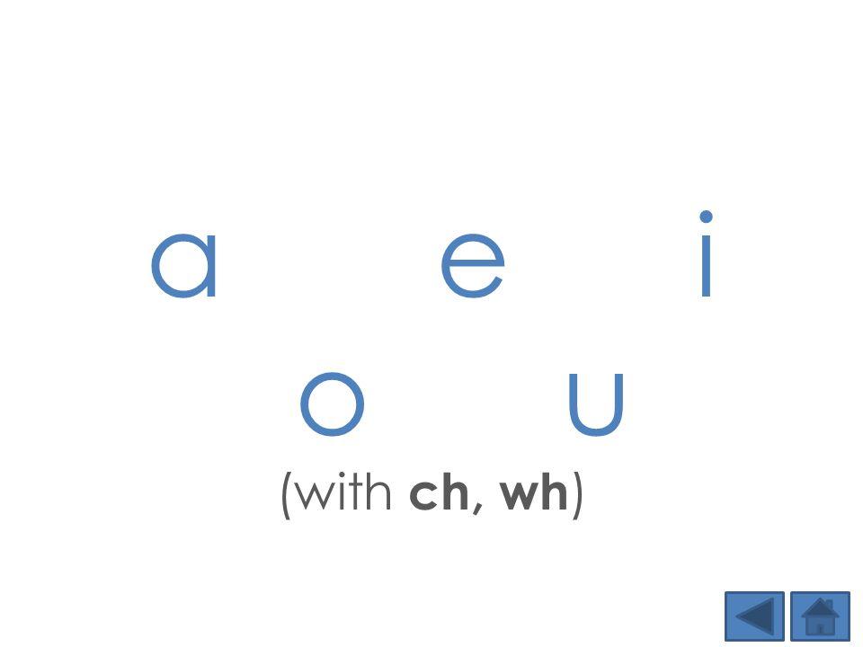 a e i o u (with ch, wh )