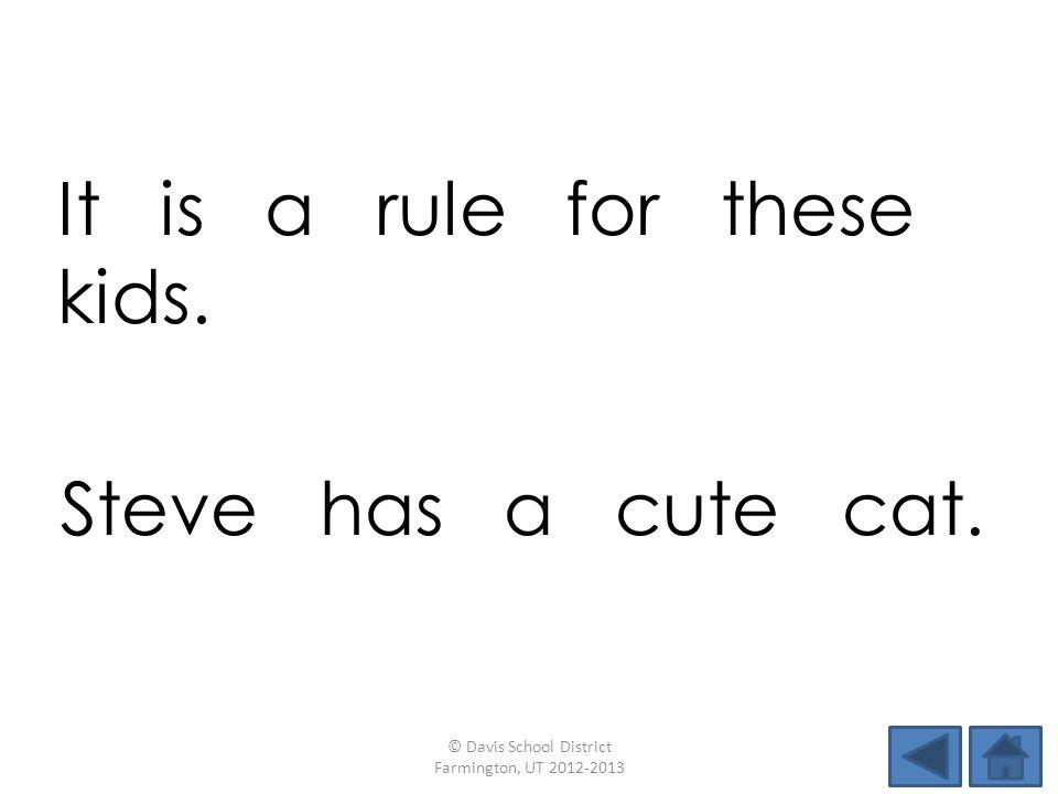 It is a rule for these kids. © Davis School District Farmington, UT 2012-2013 Steve has a cute cat.