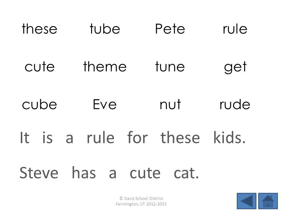thesetubePeterule cutethemetuneget cubeEvenutrude Steve has a cute cat. © Davis School District Farmington, UT 2012-2013 It is a rule for these kids.