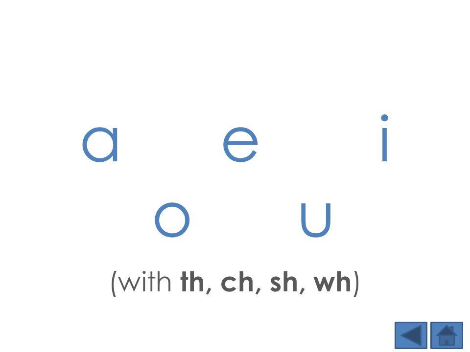 a e i o u (with th, ch, sh, wh )