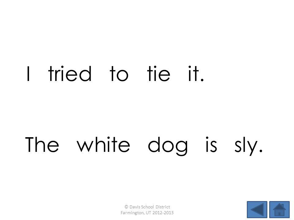 I tried to tie it. © Davis School District Farmington, UT 2012-2013 The white dog is sly.