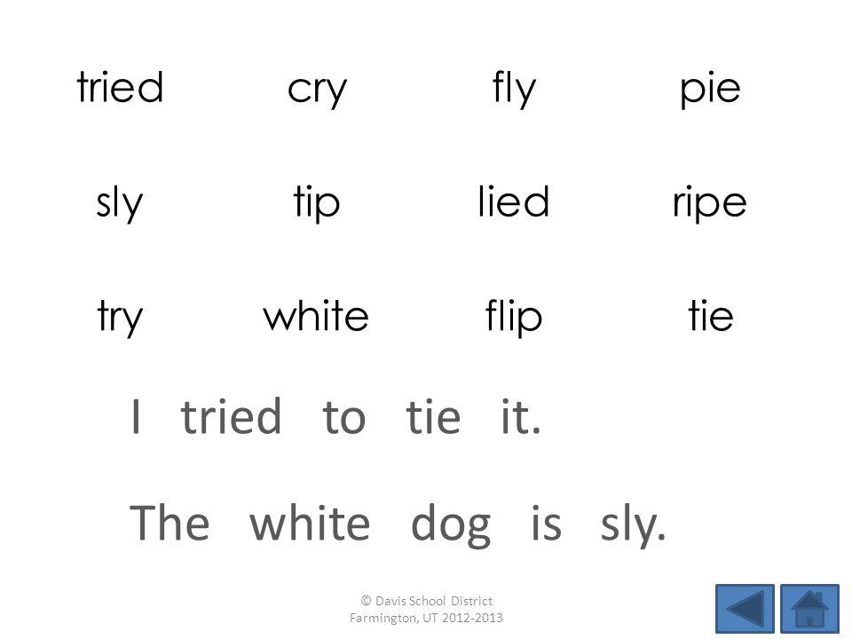triedcryflypie slytipliedripe trywhitefliptie The white dog is sly.