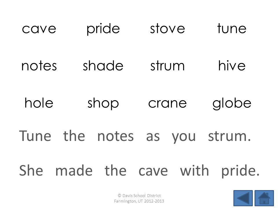 cavepridestovetune notesshadestrumhive holeshopcraneglobe She made the cave with pride.