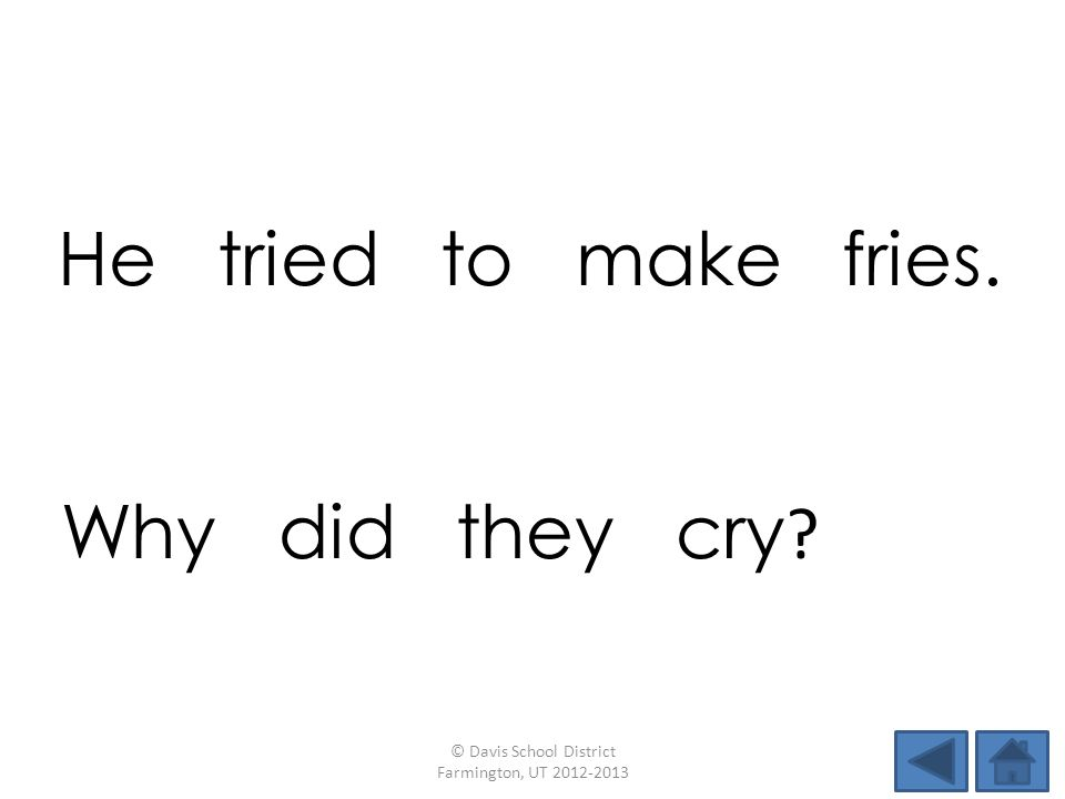 He tried to make fries. © Davis School District Farmington, UT 2012-2013 Why did they cry