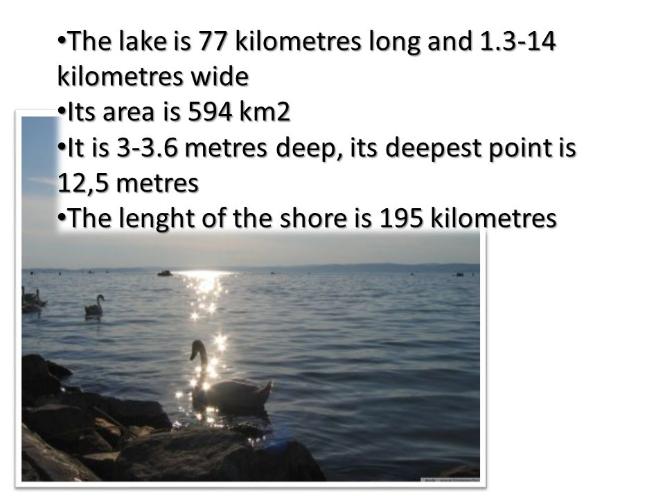 The lake is 77 kilometres long and 1.3-14 kilometres wide The lake is 77 kilometres long and 1.3-14 kilometres wide Its area is 594 km2 Its area is 59