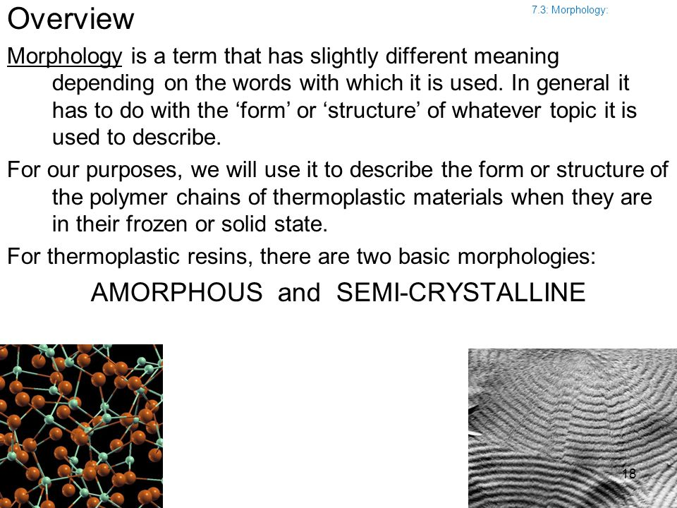 Overview Morphology is a term that has slightly different meaning depending on the words with which it is used. In general it has to do with the 'form