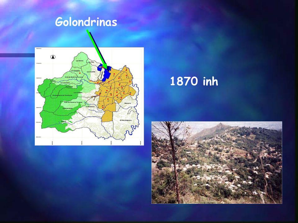 Golondrinas 1870 inh
