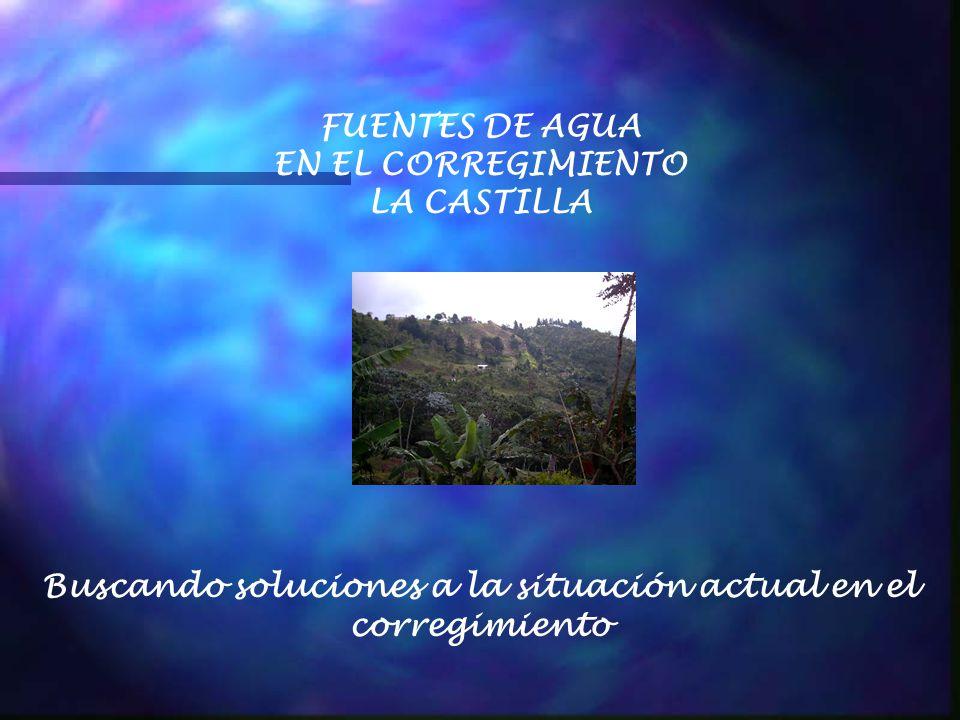 FUENTES DE AGUA EN EL CORREGIMIENTO LA CASTILLA Buscando soluciones a la situación actual en el corregimiento