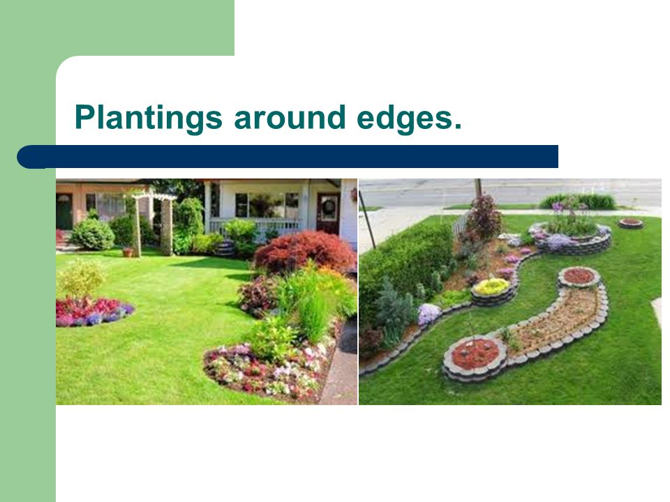 Plantings around edges.