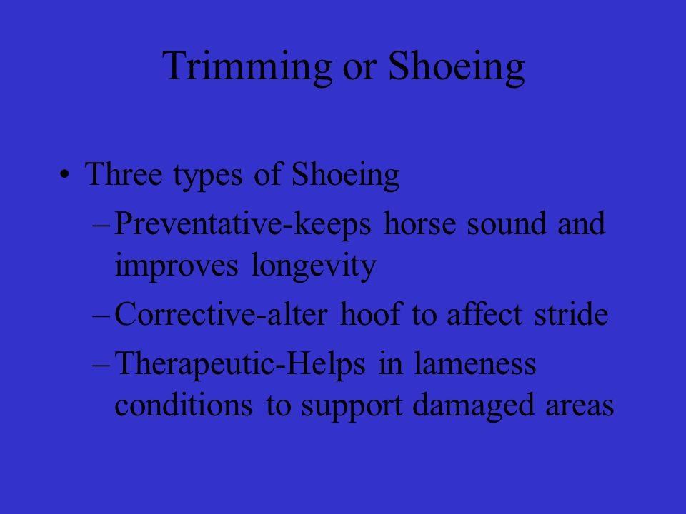 Trimming or Shoeing Three types of Shoeing –Preventative-keeps horse sound and improves longevity –Corrective-alter hoof to affect stride –Therapeutic-Helps in lameness conditions to support damaged areas