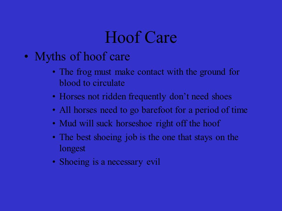 Hoof Care Myths of hoof care The frog must make contact with the ground for blood to circulate Horses not ridden frequently don't need shoes All horses need to go barefoot for a period of time Mud will suck horseshoe right off the hoof The best shoeing job is the one that stays on the longest Shoeing is a necessary evil