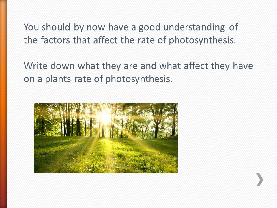You should by now have a good understanding of the factors that affect the rate of photosynthesis. Write down what they are and what affect they have