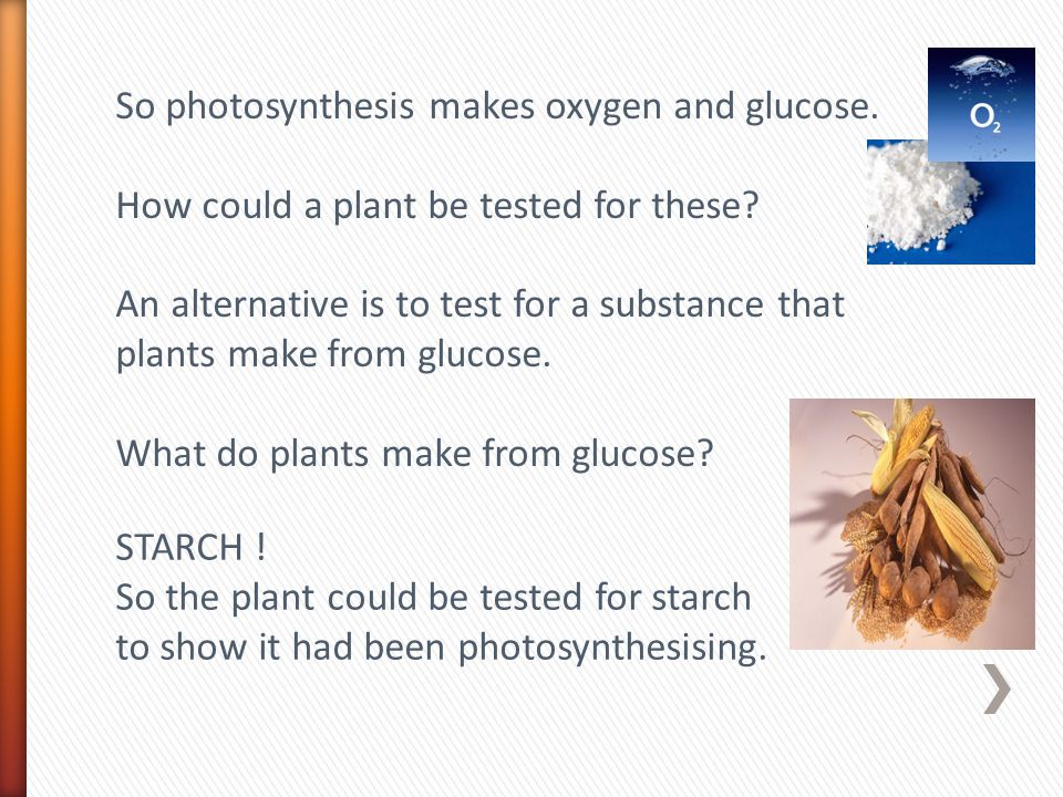 So photosynthesis makes oxygen and glucose. How could a plant be tested for these? An alternative is to test for a substance that plants make from glu