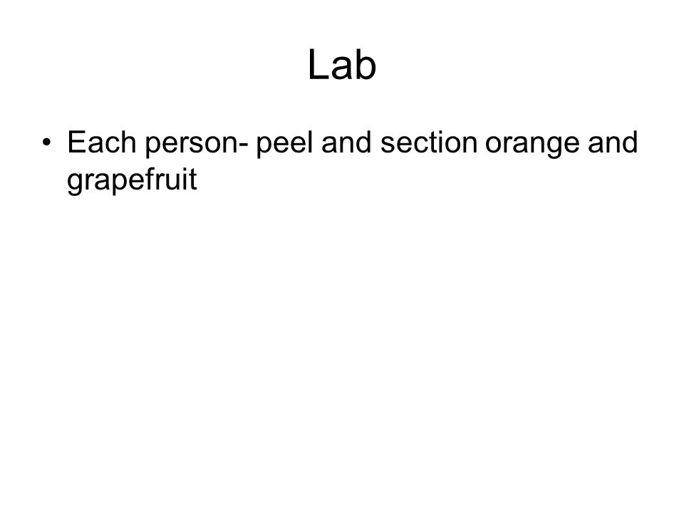 Lab Each person- peel and section orange and grapefruit