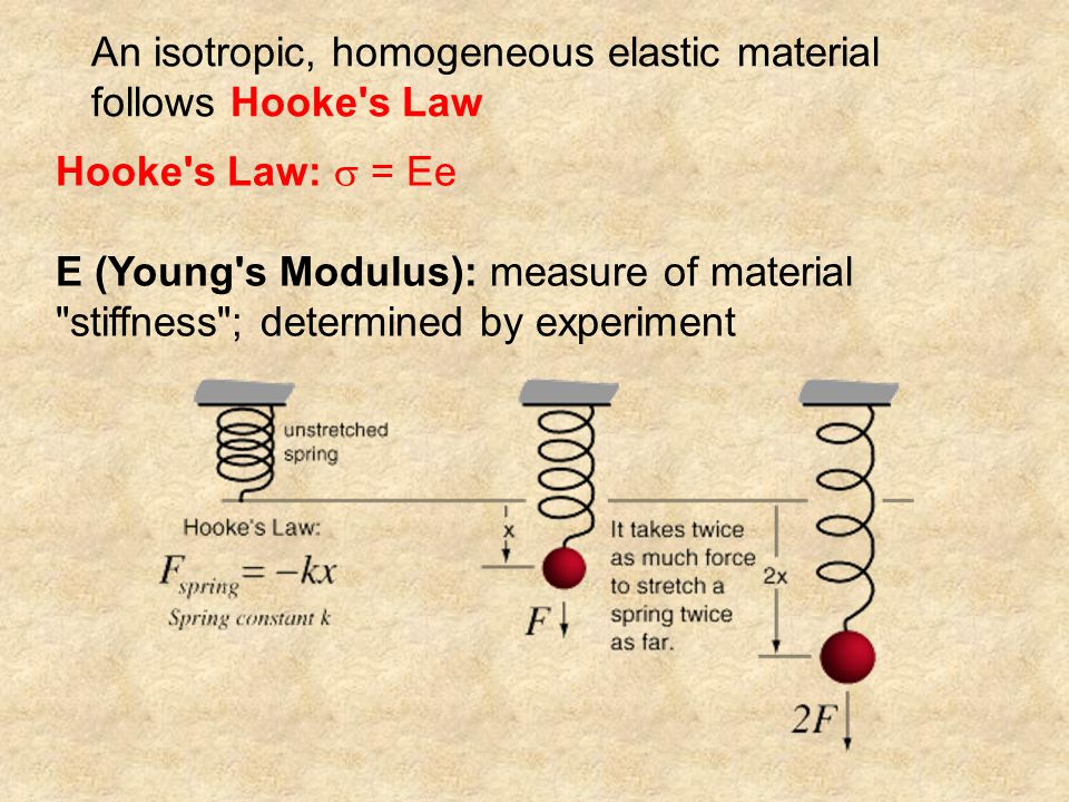 An isotropic, homogeneous elastic material follows Hooke s Law Hooke s Law:  = Ee E (Young s Modulus): measure of material stiffness ; determined by experiment