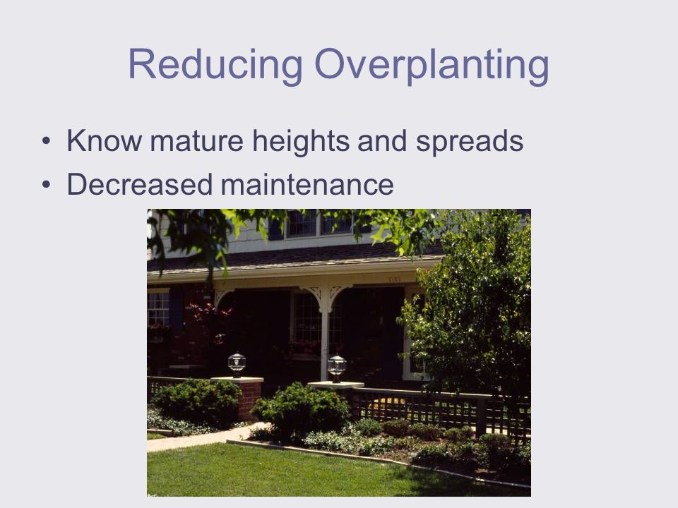 Reducing Overplanting Know mature heights and spreads Decreased maintenance