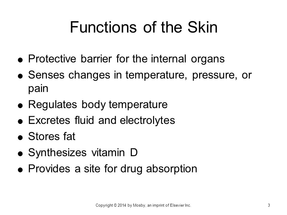  Protective barrier for the internal organs  Senses changes in temperature, pressure, or pain  Regulates body temperature  Excretes fluid and elec