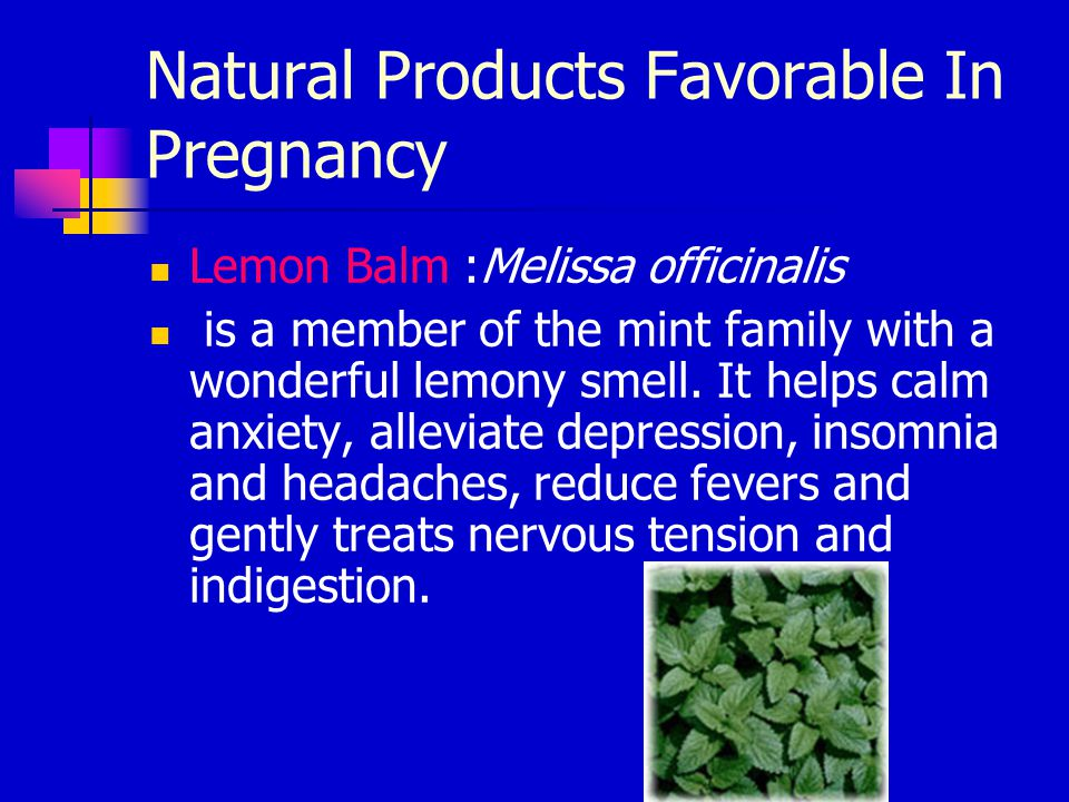 Natural Products Favorable In Pregnancy Lemon Balm :Melissa officinalis is a member of the mint family with a wonderful lemony smell. It helps calm an