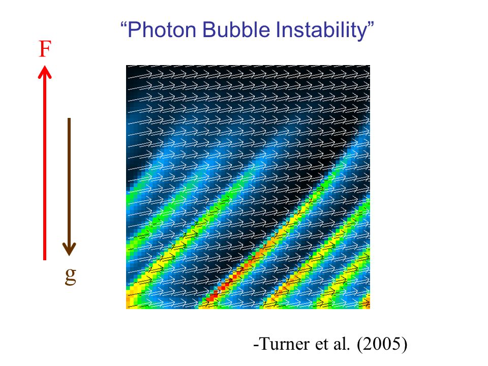 -Turner et al. (2005) F g Photon Bubble Instability