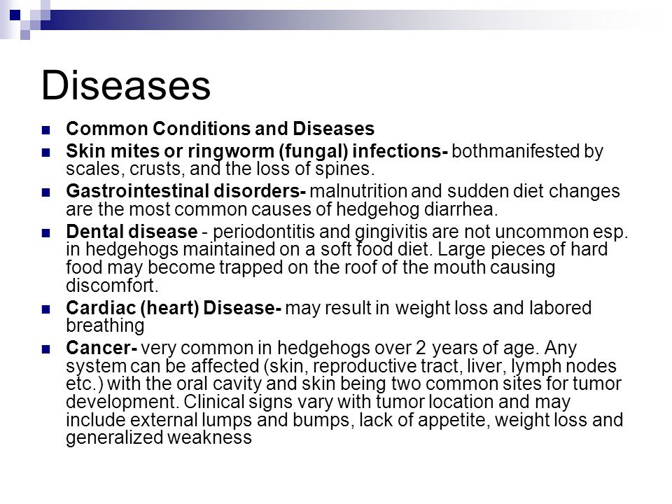 Diseases Common Conditions and Diseases Skin mites or ringworm (fungal) infections- bothmanifested by scales, crusts, and the loss of spines. Gastroin
