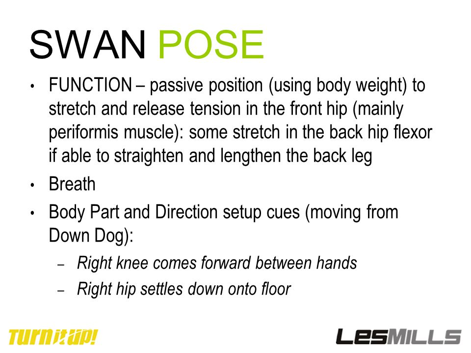 SWAN POSE FUNCTION – passive position (using body weight) to stretch and release tension in the front hip (mainly periformis muscle): some stretch in