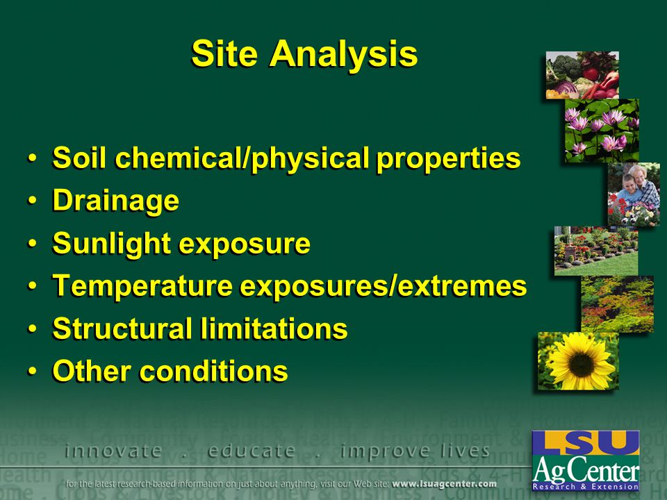 Site Analysis Soil chemical/physical properties Drainage Sunlight exposure Temperature exposures/extremes Structural limitations Other conditions Soil