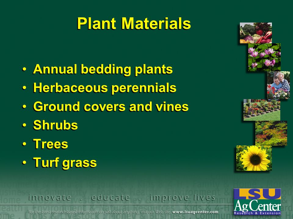 Plant Materials Annual bedding plants Herbaceous perennials Ground covers and vines Shrubs Trees Turf grass Annual bedding plants Herbaceous perennial
