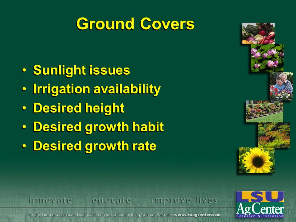 Ground Covers Sunlight issues Irrigation availability Desired height Desired growth habit Desired growth rate Sunlight issues Irrigation availability